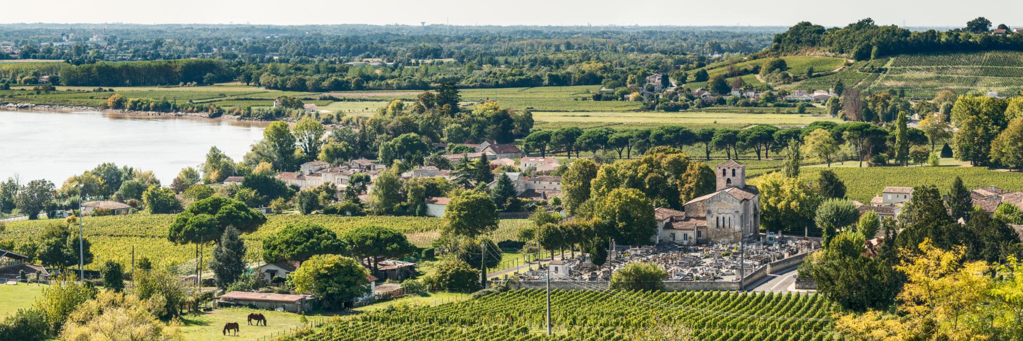 15-15152-france-gironde-la-dordogne-vue-du-tertre-de-fronsac-panorama-sentucq-h